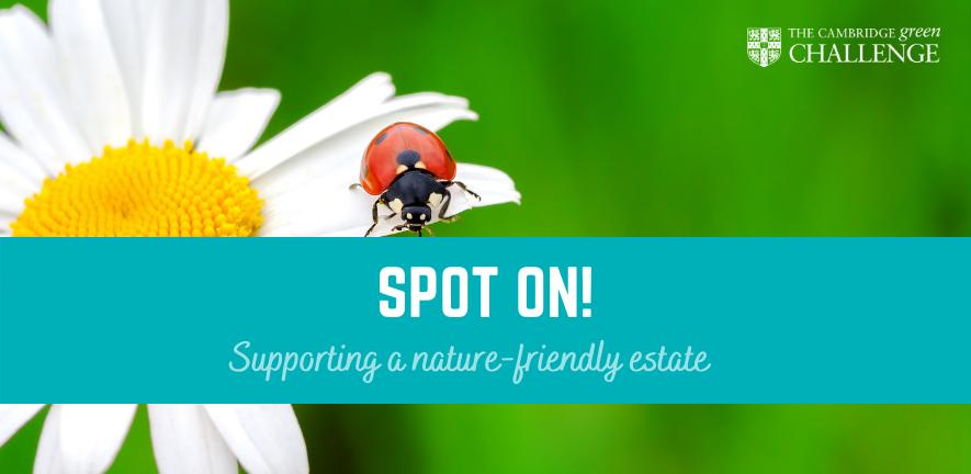Biodiversity Spot on